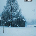 cvr_thensnow_bookstore