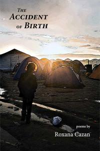 Cvr_AccidentBirth_bookstore